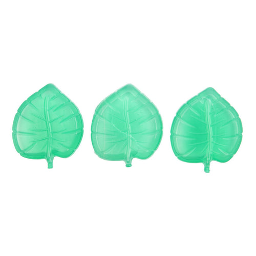 Ice Coolers- Monstera Leaf