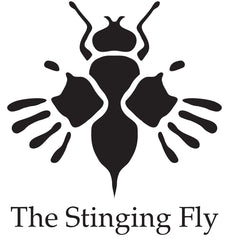The Stining Fly The Irish Writers Centre Dublin