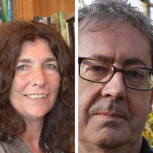 Online: Tricksters, Totems and Thieves with poets Eileen Sheehan & Nicholas McLachlan Poetry Writing Courses Irish Writers Centre Dublin