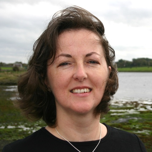 Online: Writing for Children: Picture Books and Early Readers with Marie-Louise Fitzpatrick Writing Courses Irish Writers Centre Dublin