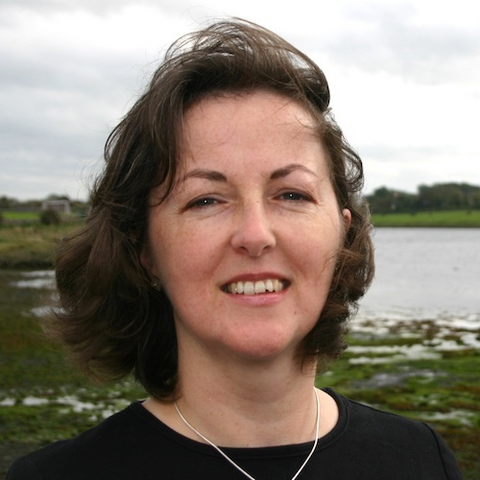 Online: Writing and Creating Picture Books with Marie-Louise Fitzpatrick Irish Writers Centre Dublin