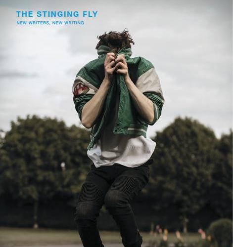 Launch: The Stinging Fly Winter 2018-19 issue