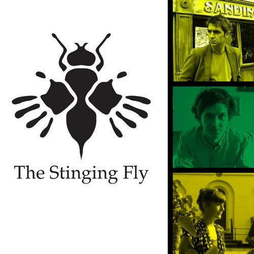 The Stinging Fly and Irish Writers Centre Summer School Dublin