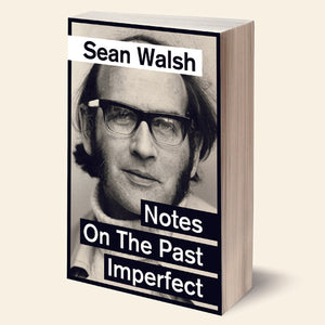 Book Launch: Notes on the Past Imperfect by Sean Walsh
