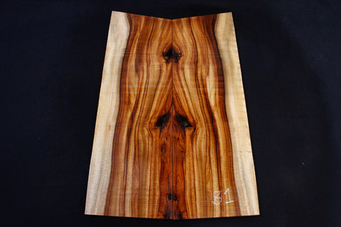 Camphor Laurel Drop Top