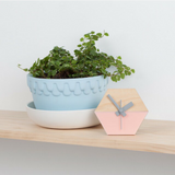Amindy Scandinavian Blush Pink Desk Clock