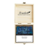 Peacock Feather Pocket Square by Brackish