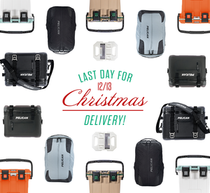 Free Shipping Christmas Deadline 12/13