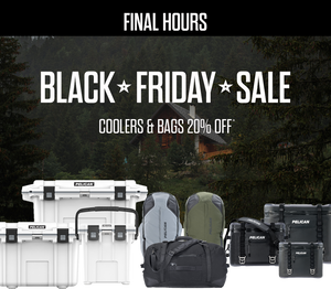 Black Friday Sale Final Hours