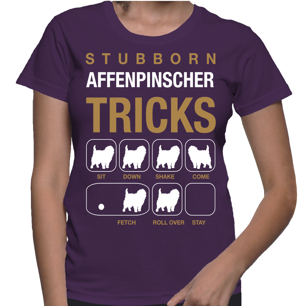 Dogs Stubborn Affenpinscher Tricks