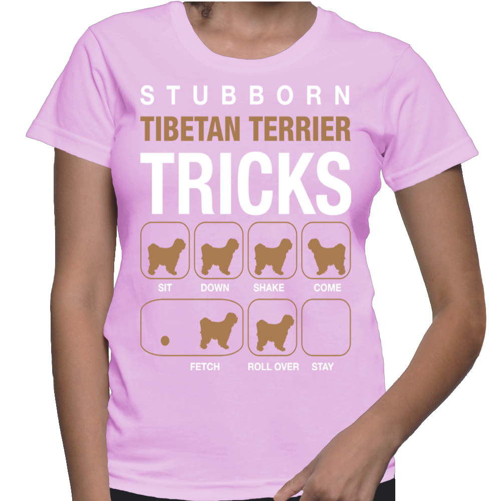Dogs Stubborn Tibetan Terrier Tricks