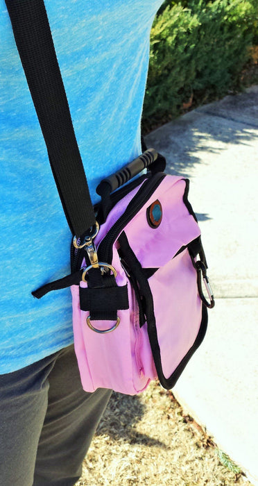 Carry Pack - (Pink Mini) - Love the Lord Inc