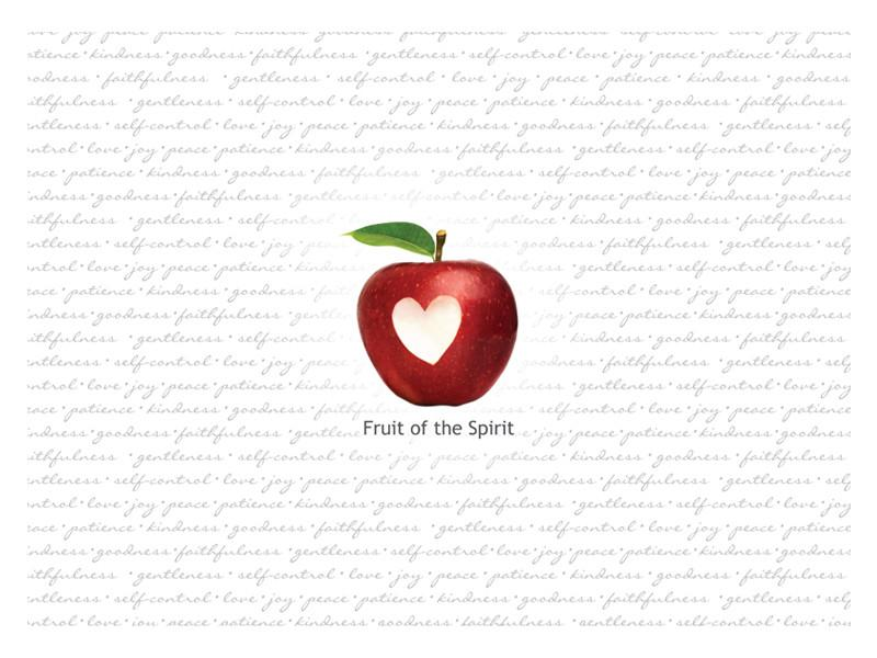 Laptop Skin - Fruit of the Spirit - Love the Lord Inc