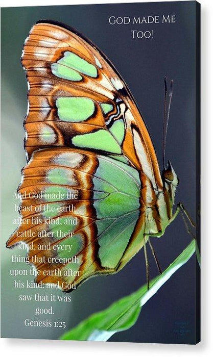 Green Butterfly - God Made Me Too - Acrylic Print - Love the Lord Inc