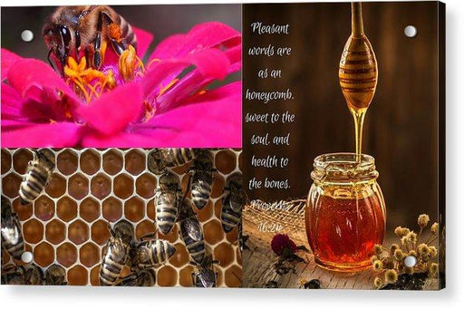 Pleasant Words And Honey - Acrylic Print - Love the Lord Inc