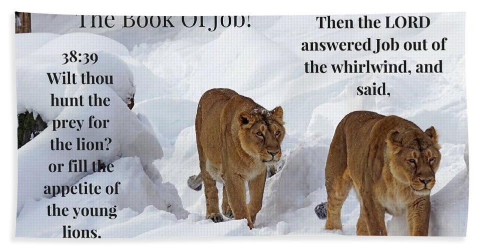 The Book Of Job 2lions - Bath Towel - Love the Lord Inc