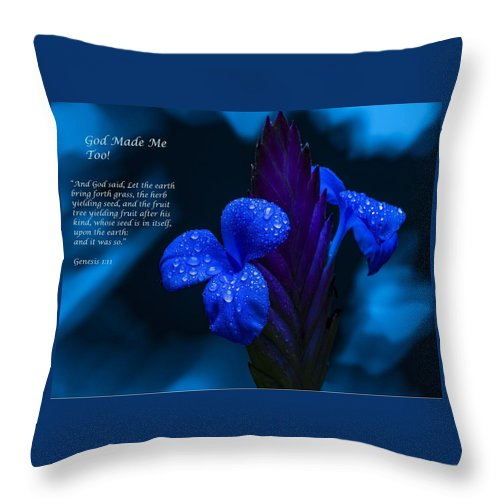 Beautiful Blue - God Made Me Too - Throw Pillow - Love the Lord Inc