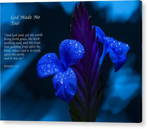 Beautiful Blue - God Made Me Too - Acrylic Print - Love the Lord Inc