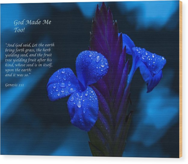 Beautiful Blue - God Made Me Too - Wood Print - Love the Lord Inc
