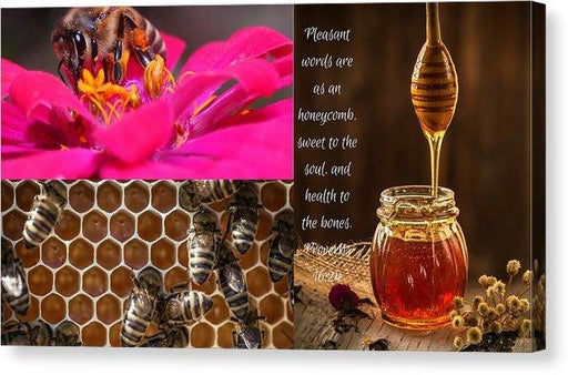 Pleasant Words And Honey - Canvas Print - Love the Lord Inc