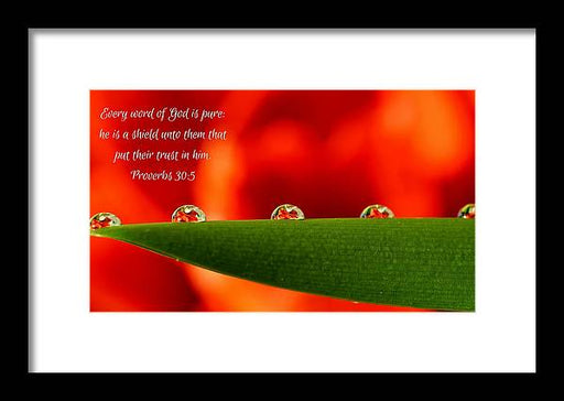 Every Word of God Pure Org - Framed Print - Love the Lord Inc