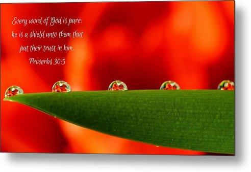 Every Word of God Pure Org - Metal Print - Love the Lord Inc