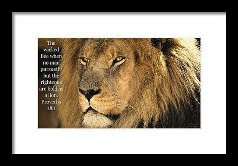 Framed Print - Bold As A Lion - Framed Print