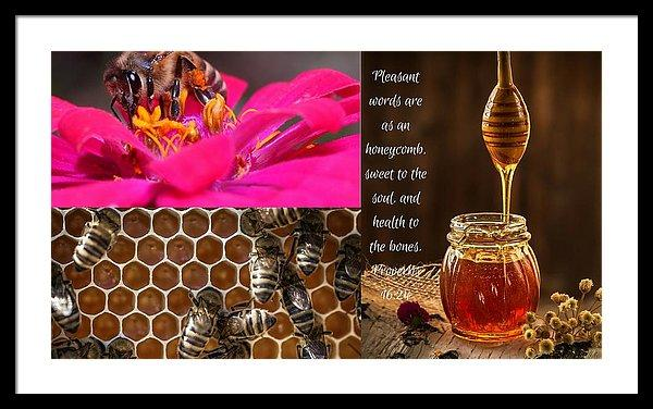 Pleasant Words And Honey - Framed Print - Love the Lord Inc