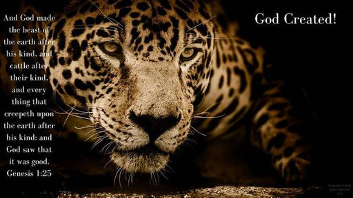 God Created Jaguar - Art Print - Love the Lord Inc