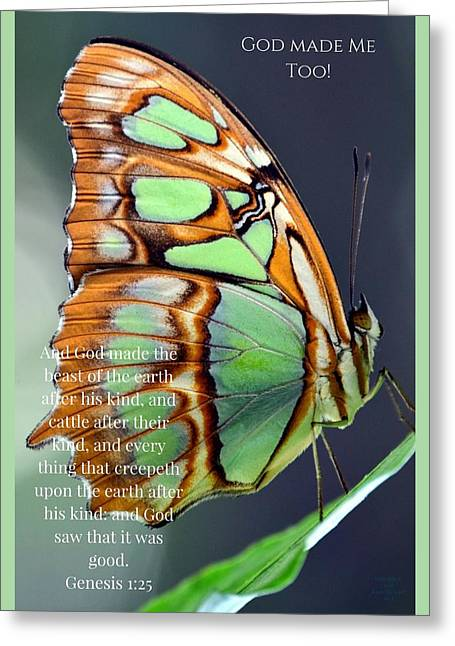 Green Butterfly - God Made Me Too - Greeting Card - Love the Lord Inc
