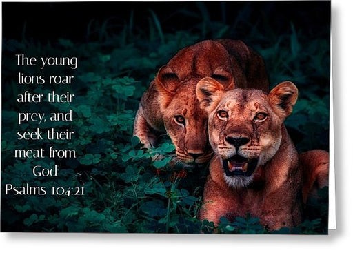 Lions Seek Food From God - Greeting Card - Love the Lord Inc