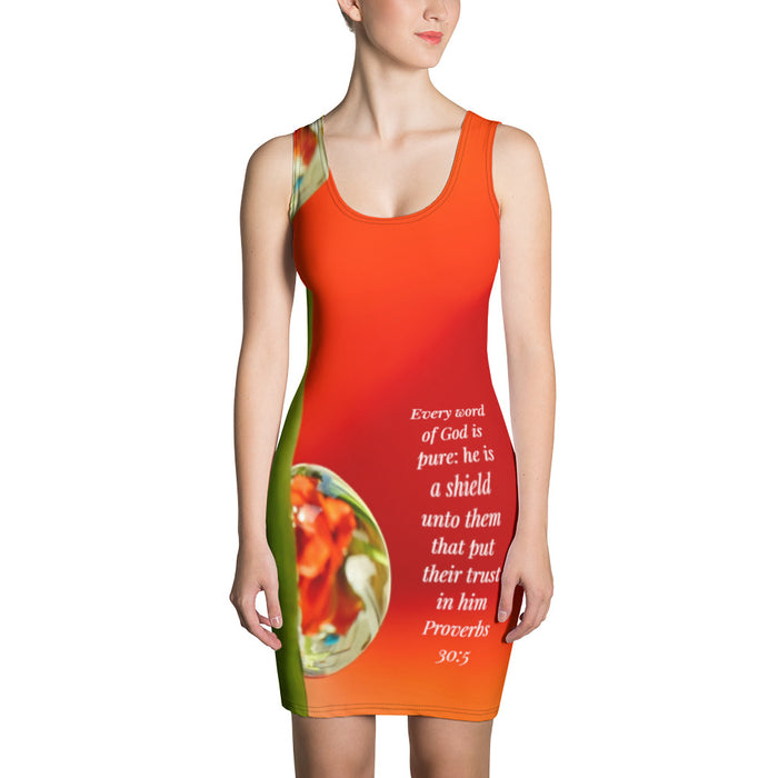 Sublimation Cut & Sew Dress - Gods Word is Pure - Love the Lord Inc