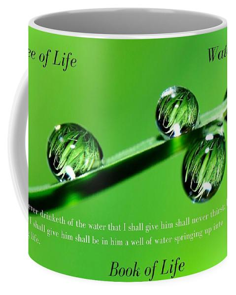 Tree Water Book Of Life Water Drops - Mug - Love the Lord Inc