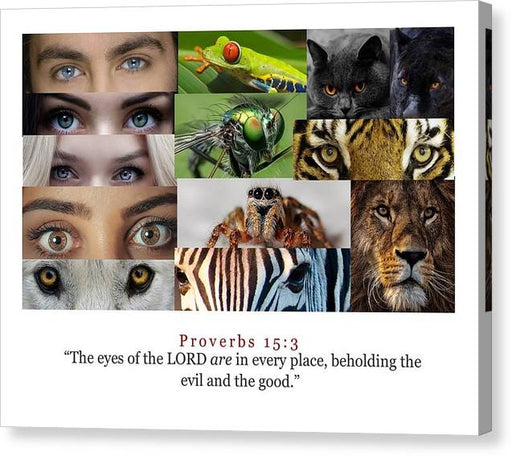 The Eyes of the Lord - Canvas Print - Love the Lord Inc