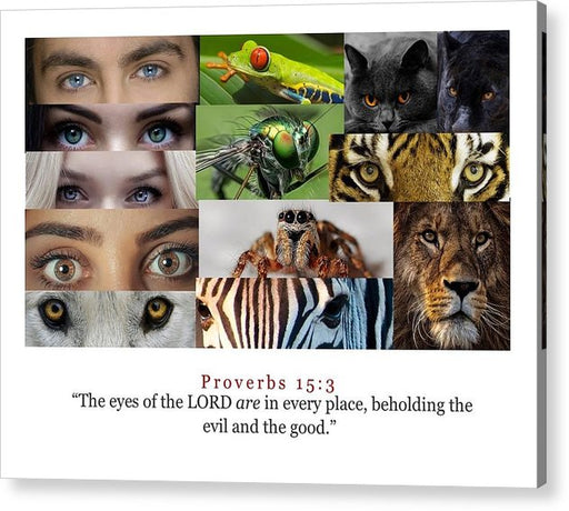 The Eyes of the Lord - Acrylic Print - Love the Lord Inc