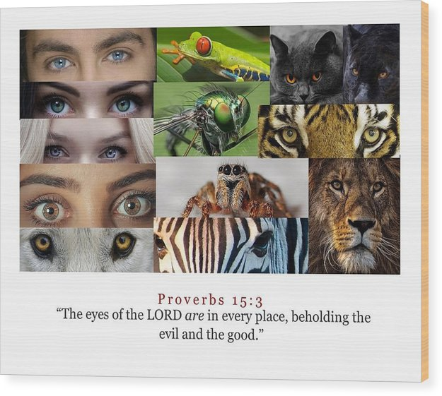 The Eyes of the Lord - Wood Print - Love the Lord Inc
