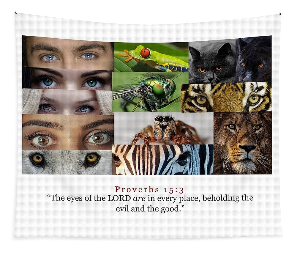 The Eyes of the Lord - Tapestry - Love the Lord Inc