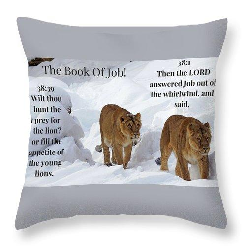 The Book Of Job 2lions - Throw Pillow - Love the Lord Inc