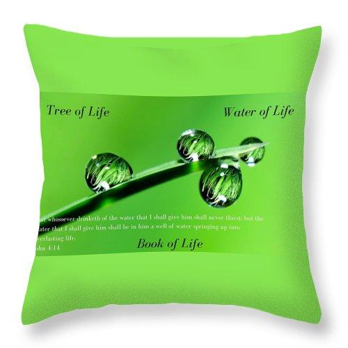 Tree Water Book Of Life Water Drops - Throw Pillow - Love the Lord Inc