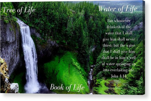 Tree Book Water Of Life Forrest - Acrylic Print - Love the Lord Inc