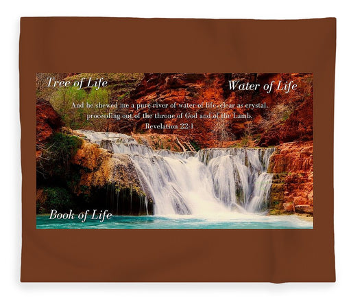 Tree Water Book of Life River - Blanket - Love the Lord Inc