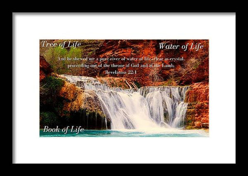 Tree Water Book of Life River - Framed Print - Love the Lord Inc