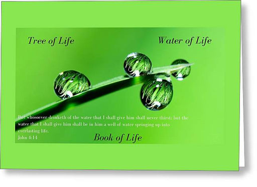 Tree Water Book Of Life Water Drops - Greeting Card