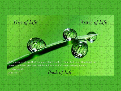 Tree Water Book of Life Water Drops - Puzzle - Love the Lord Inc