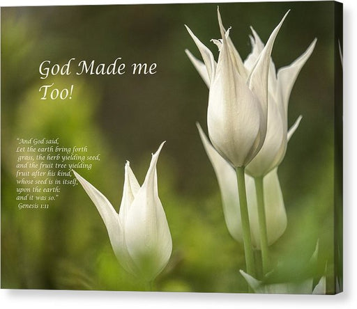 Tulips - God Made Me Too - Canvas Print - Love the Lord Inc