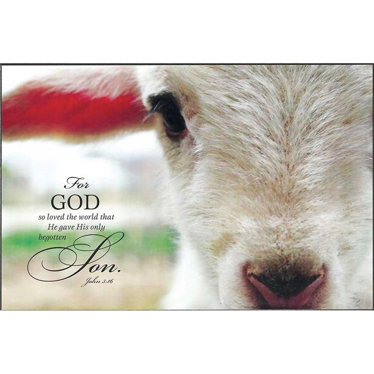 Christian Wall Art - The Lamb Of God - Love the Lord Inc