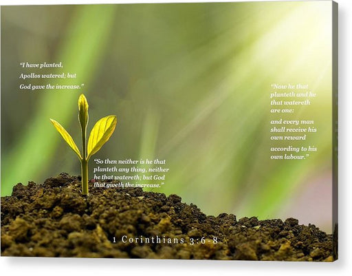 We Plant God Waters - Acrylic Print - Love the Lord Inc