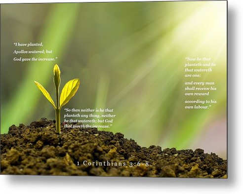 We Plant God Waters - Metal Print - Love the Lord Inc