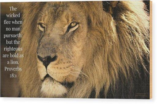 Bold As A Lion - Wood Print - Love the Lord Inc