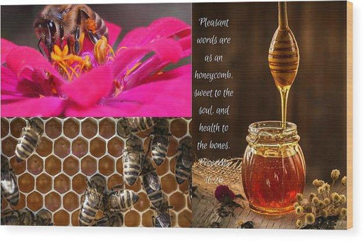 Pleasant Words And Honey - Wood Print - Love the Lord Inc